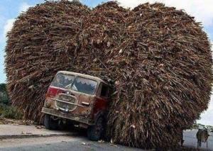 Esta foto circula na internet há tempos, e muitos acham que é uma montagem. Mas, não. Trata-se de um registro feito pela agência Reuters de um caminhão transportando milho na Somália. (Foto: Reuters)