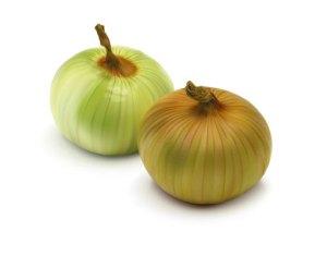 onion_m
